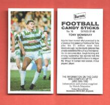 Glasgow Celtic Tony Mowbray 16